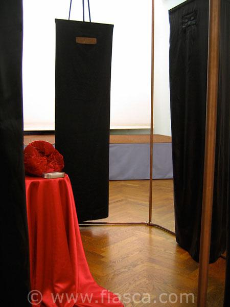 Installation Dévoilées - au Salon Curnonsky, Angers