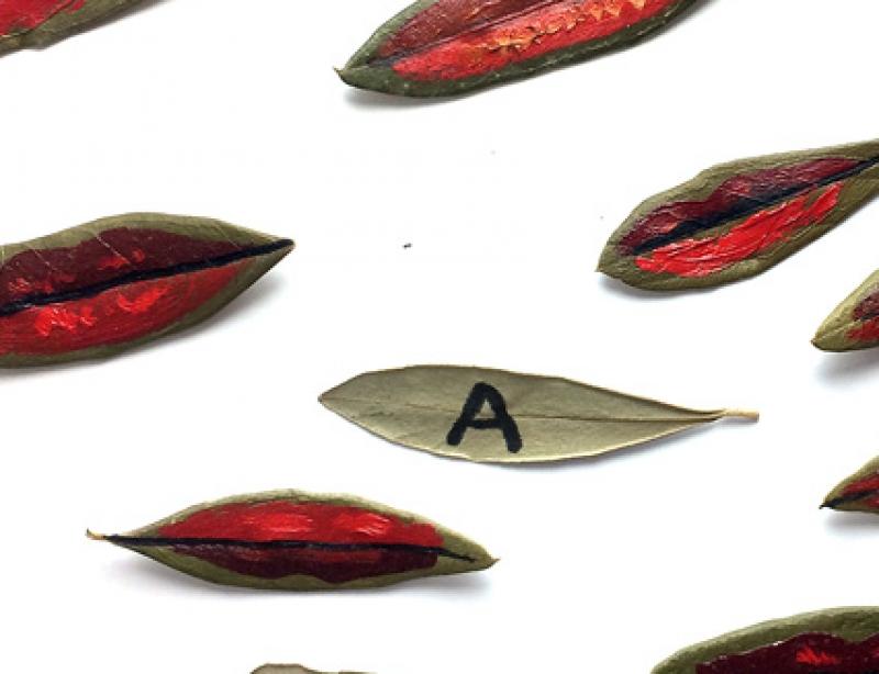 Feuilles d'olivier peintes